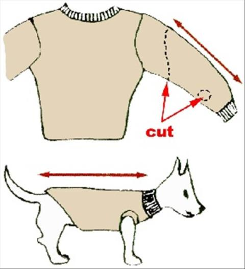 DIY-Fun-Crafts-Recycle-Old-Sweaters-for-your-dog